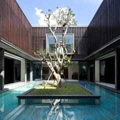 Asırlık Ağacı Yıkmamak İçin Çevresinde Yapılmış Kaliteli Bir Ev