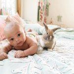Erkek Bebek ile Sevimli Tavşan Arasındaki İnanılmaz Bağlantı