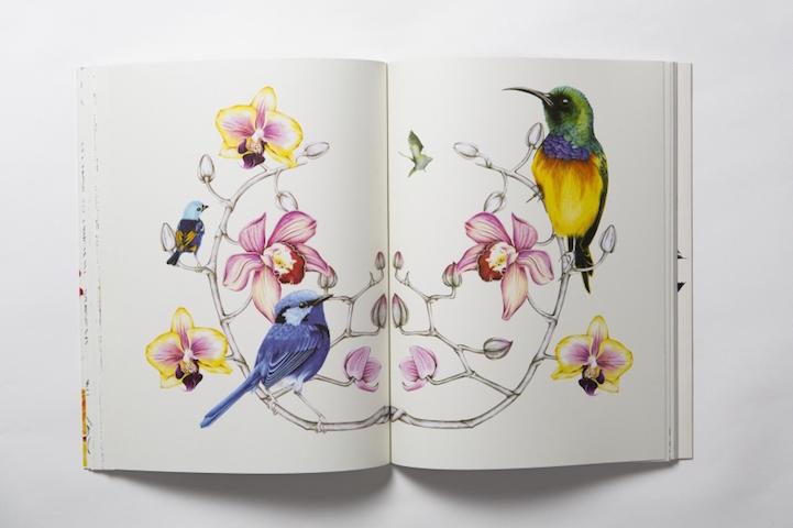 Yetişkinler Için Kuş Ve çiçekler Içeren Profesyonel Bir Boyama