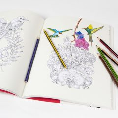Yetişkinler İçin Kuş ve Çiçekler İçeren Profesyonel Bir Boyama Kitabı