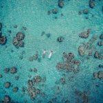 Drone ile Çekilen Etkileyici Düğün Fotoğrafları