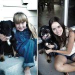Beraber Büyüyen Köpekler ve Sahiplerinin Öncesi ve Sonrasını Gösteren 22 Sevgi Dolu Fotoğraf