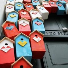 Kuşları Şehirlerde Tutabilmek İçin 3500 Yuva Yapan Adam