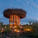 Kenya'daki Bu Kuş Yuvası Evde Bir Gece Konaklayabilirsiniz