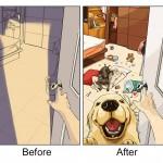 Bir Köpek Sahibi Olmadan Önceki ve Sonraki Hayat
