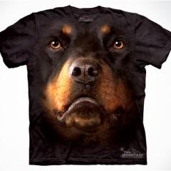 19 Farklı ve İlgi Çekici T-shirt Tasarımı