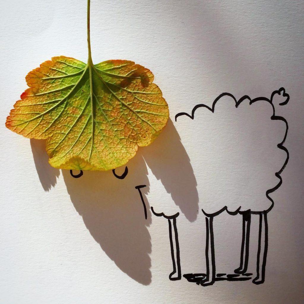 yaprak-gölgesi
