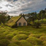 Peri Masalından Çıkmış Yeşil Çatılı 10 Muhteşem İskandinav Evi